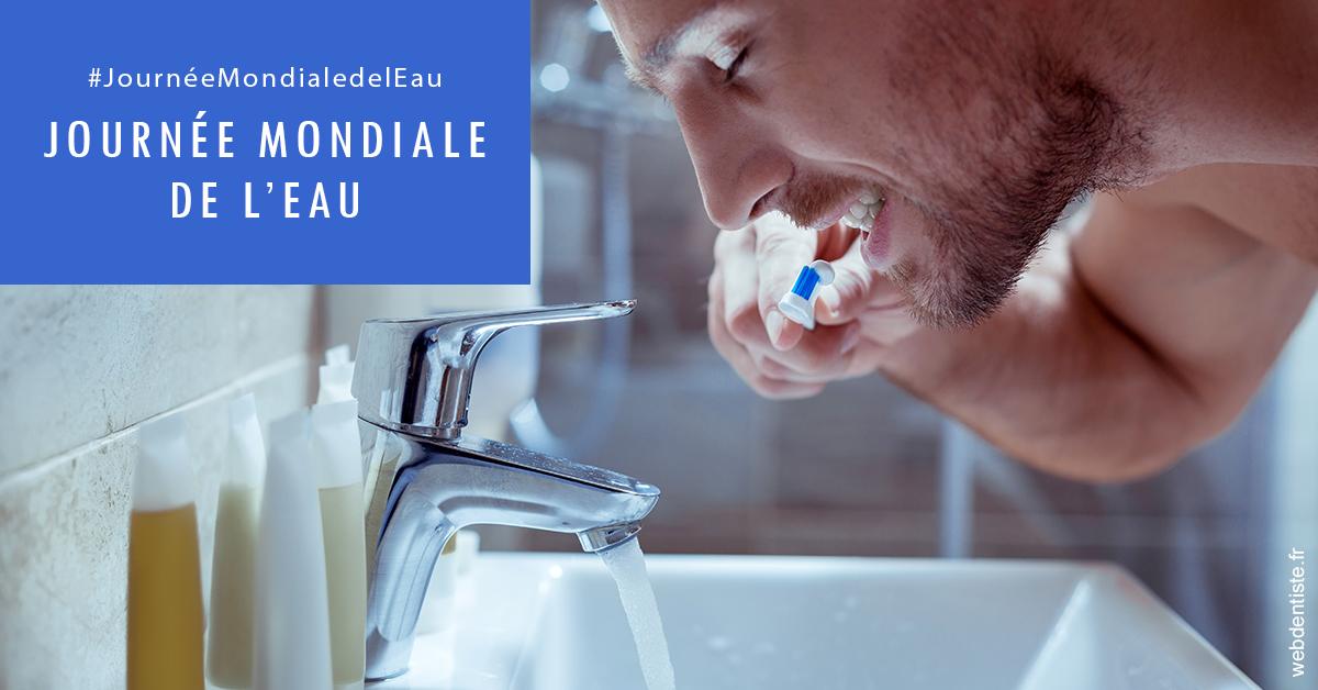 https://dr-guedj-amsellem-laure.chirurgiens-dentistes.fr/Journée de l'eau 2