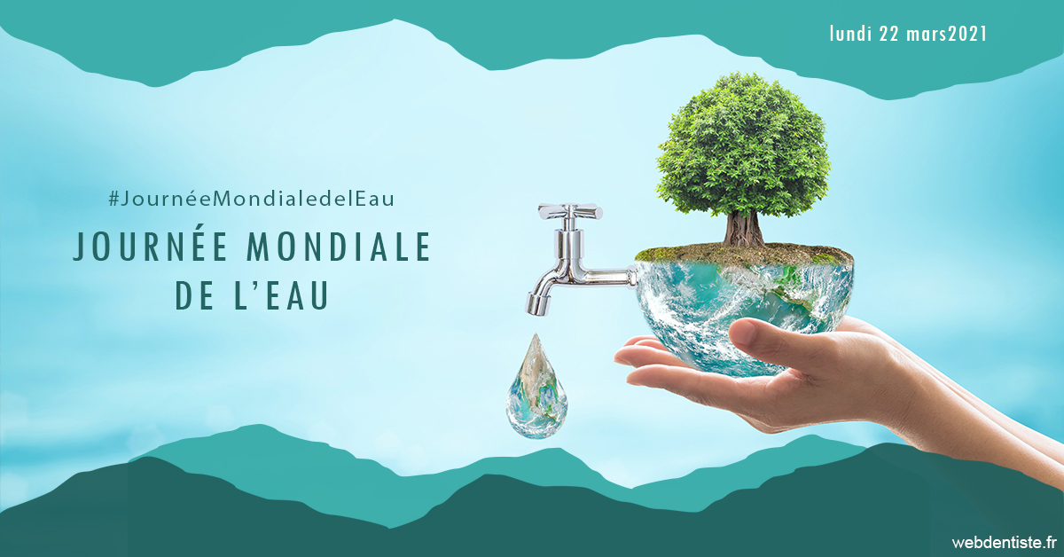 https://dr-guedj-amsellem-laure.chirurgiens-dentistes.fr/Journée de l'eau 1